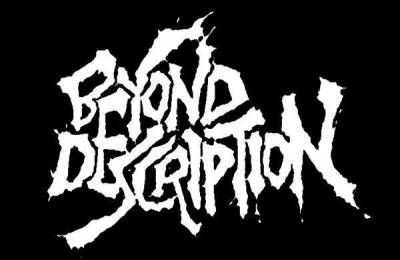 BEYOND DESCRIPTION - LP Acts of Sheer Madness