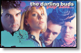 DARLING BUDS, THE - MC Pop Said...